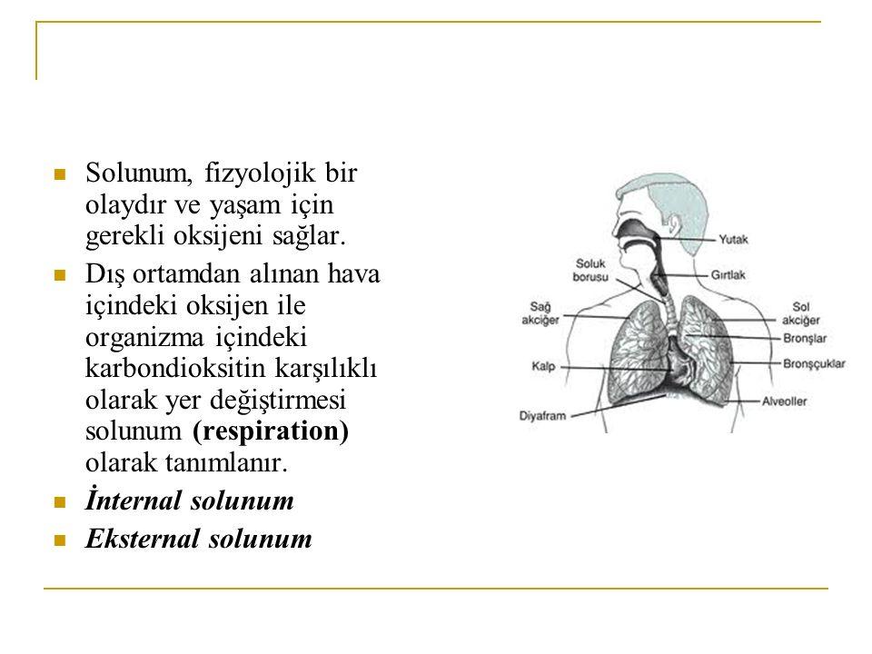 Solunum, fizyolojik bir olaydır ve yaşam için gerekli oksijeni sağlar.