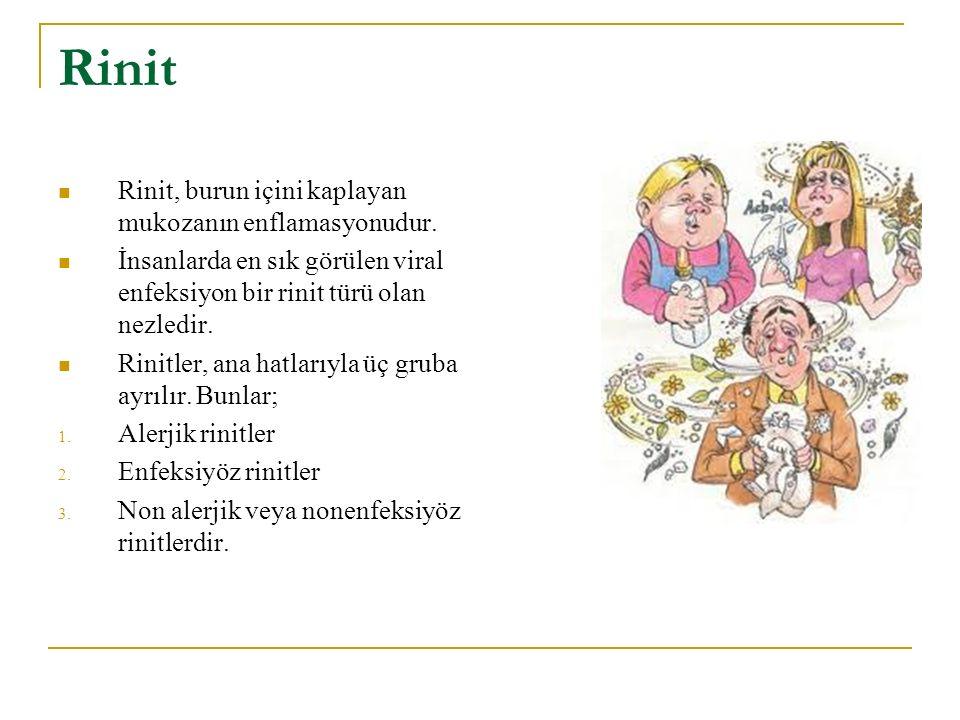 Rinit Rinit, burun içini kaplayan mukozanın enflamasyonudur.