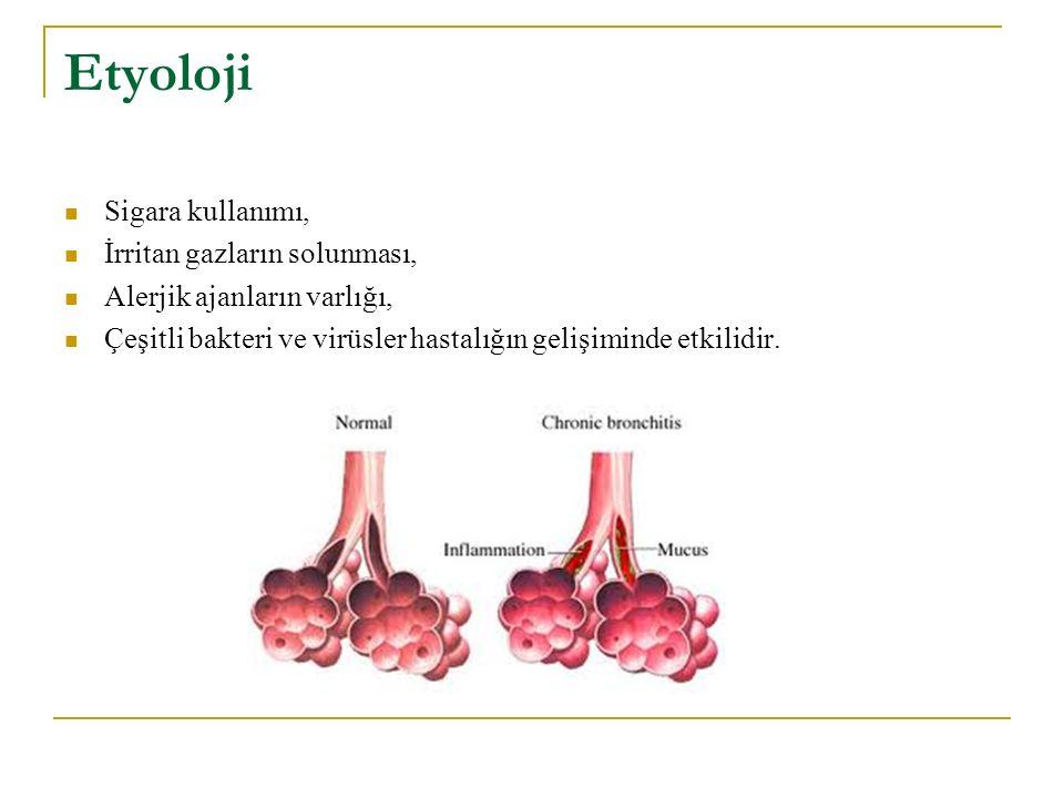 Etyoloji Sigara kullanımı, İrritan gazların solunması,