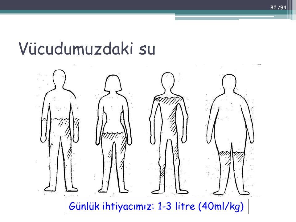 Vücudumuzdaki su Günlük ihtiyacımız: 1-3 litre (40ml/kg)