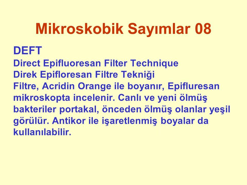 Mikroskobik Sayımlar 08