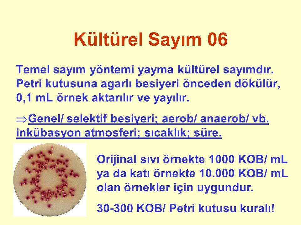 Kültürel Sayım 06 Temel sayım yöntemi yayma kültürel sayımdır. Petri kutusuna agarlı besiyeri önceden dökülür, 0,1 mL örnek aktarılır ve yayılır.