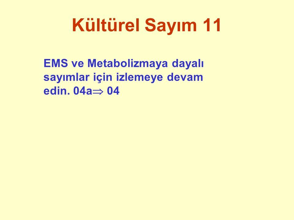 Kültürel Sayım 11 EMS ve Metabolizmaya dayalı sayımlar için izlemeye devam edin. 04a 04