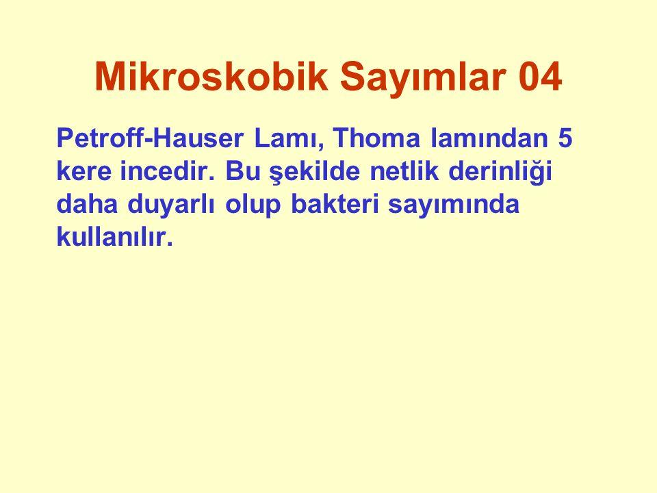 Mikroskobik Sayımlar 04