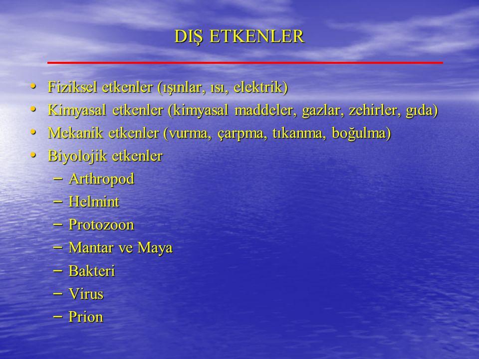 DIŞ ETKENLER Fiziksel etkenler (ışınlar, ısı, elektrik)