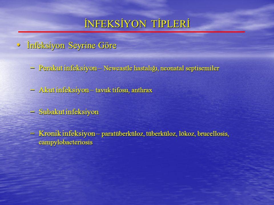 İNFEKSİYON TİPLERİ İnfeksiyon Seyrine Göre