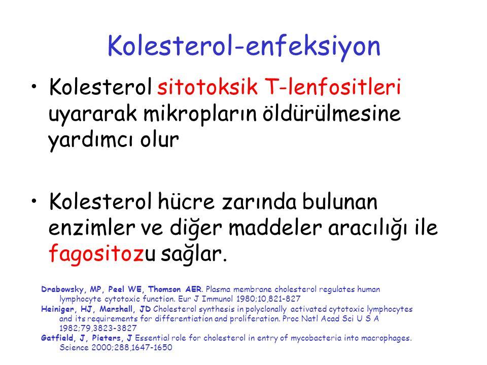 Kolesterol-enfeksiyon