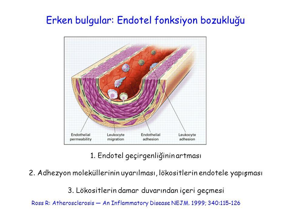 Erken bulgular: Endotel fonksiyon bozukluğu