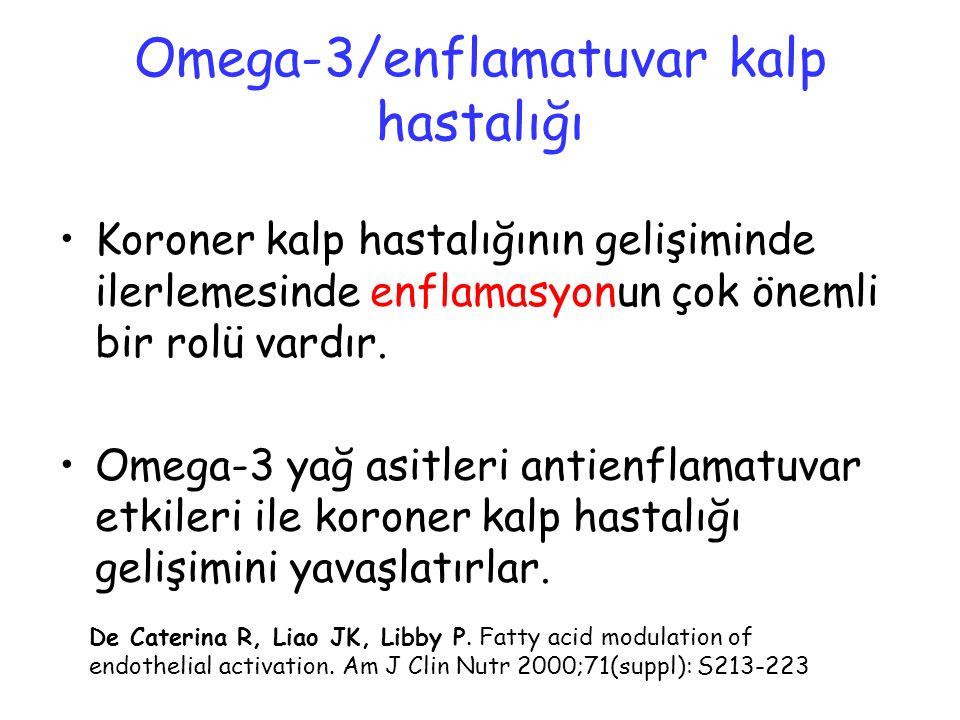 Omega-3/enflamatuvar kalp hastalığı