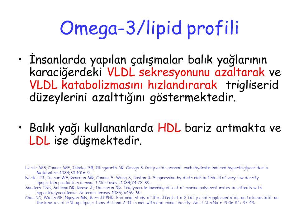Omega-3/lipid profili