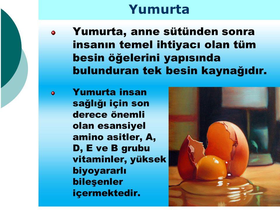 Yumurta Yumurta, anne sütünden sonra insanın temel ihtiyacı olan tüm besin öğelerini yapısında bulunduran tek besin kaynağıdır.