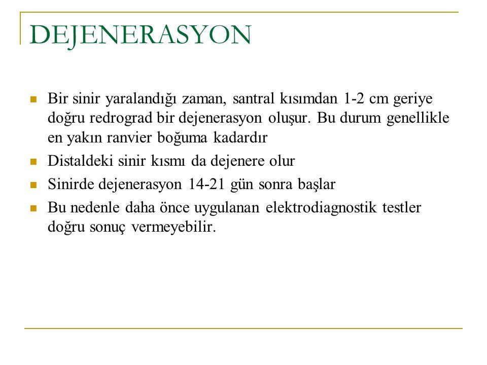 DEJENERASYON