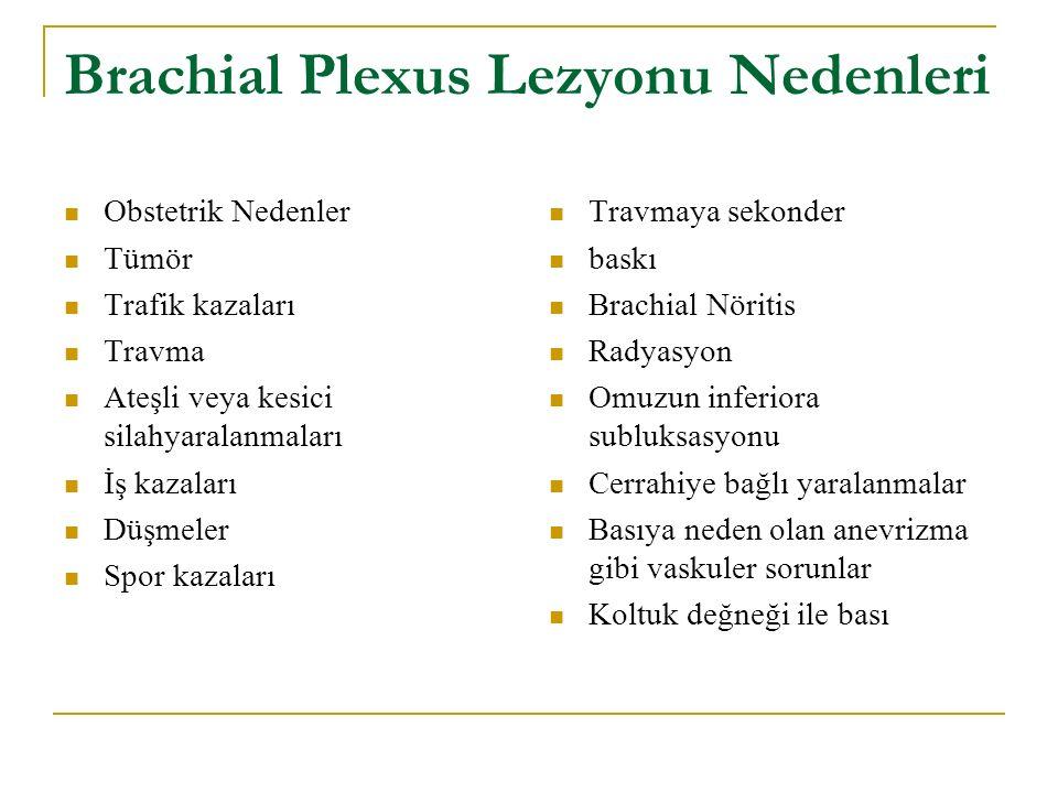 Brachial Plexus Lezyonu Nedenleri