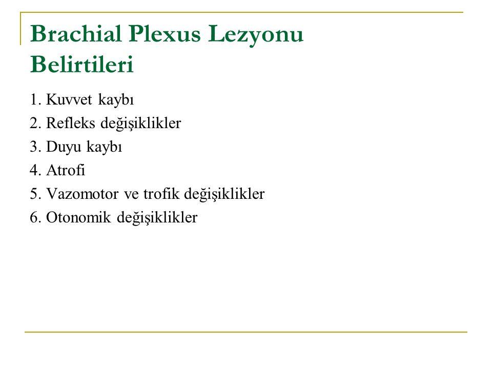 Brachial Plexus Lezyonu Belirtileri