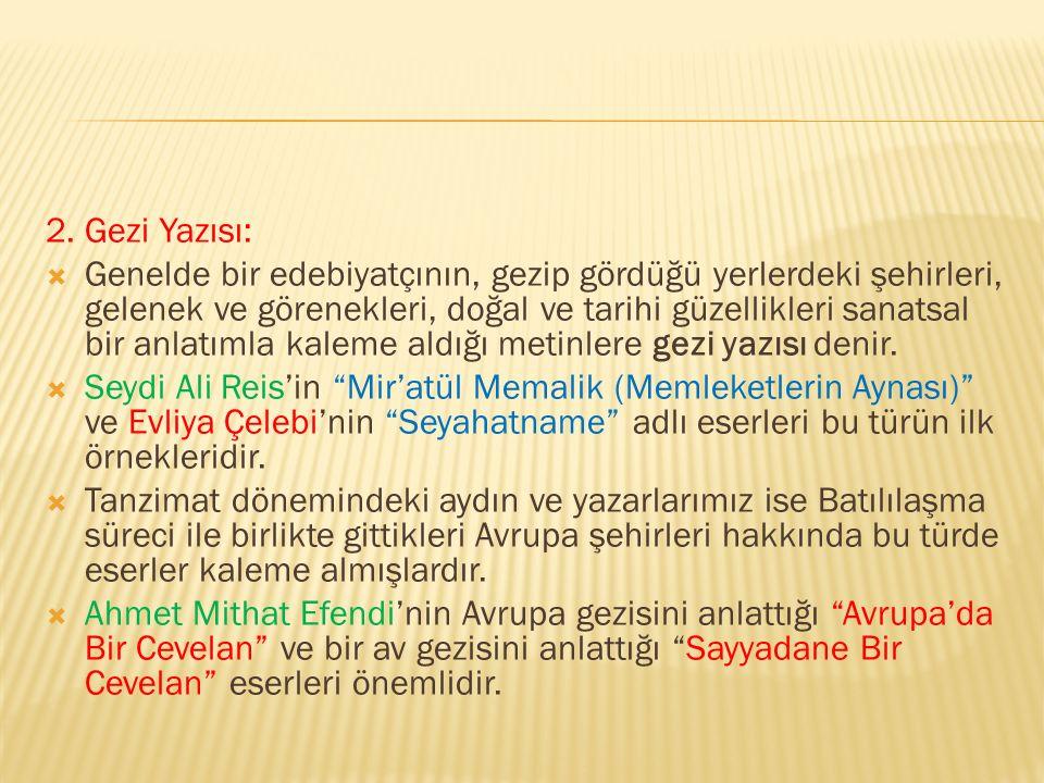 2. Gezi Yazısı: