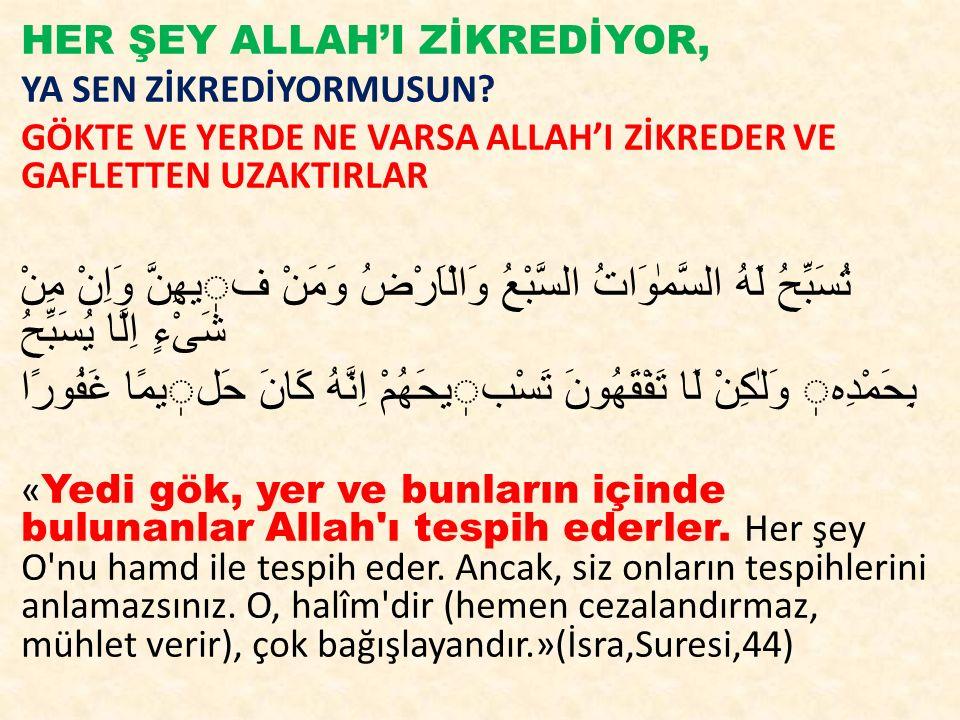 HER ŞEY ALLAH'I ZİKREDİYOR,