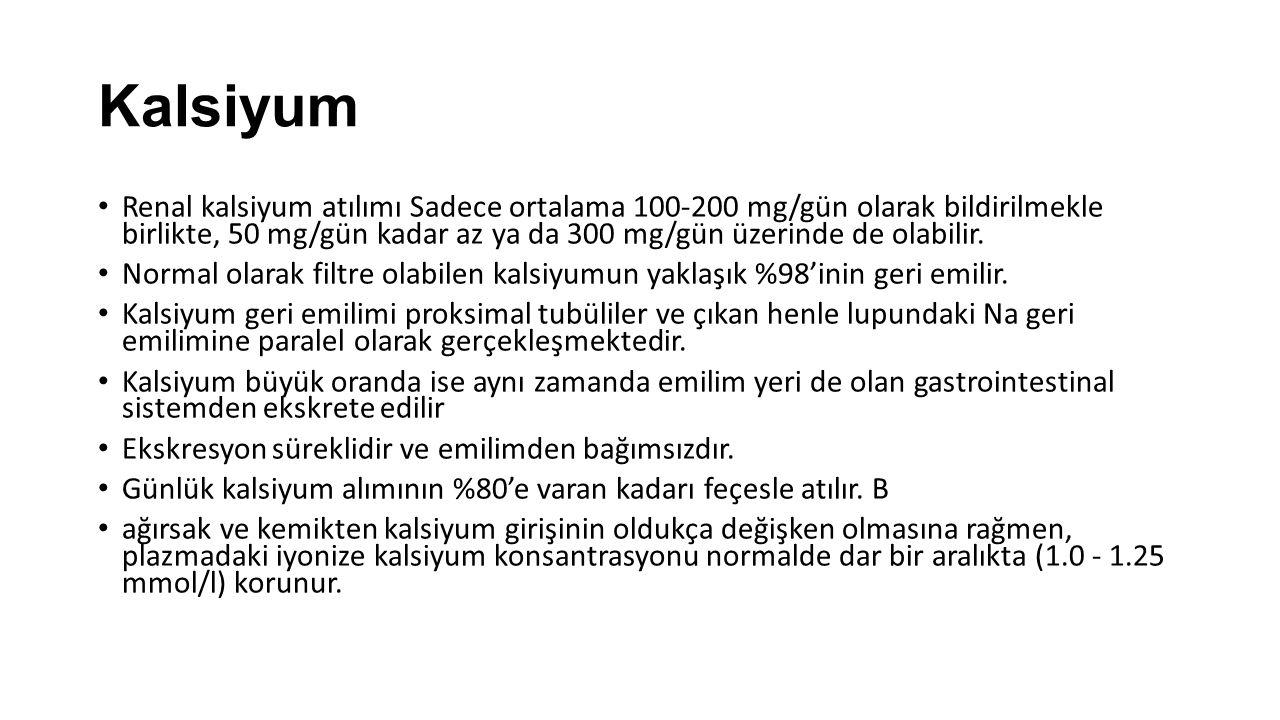 Kalsiyum