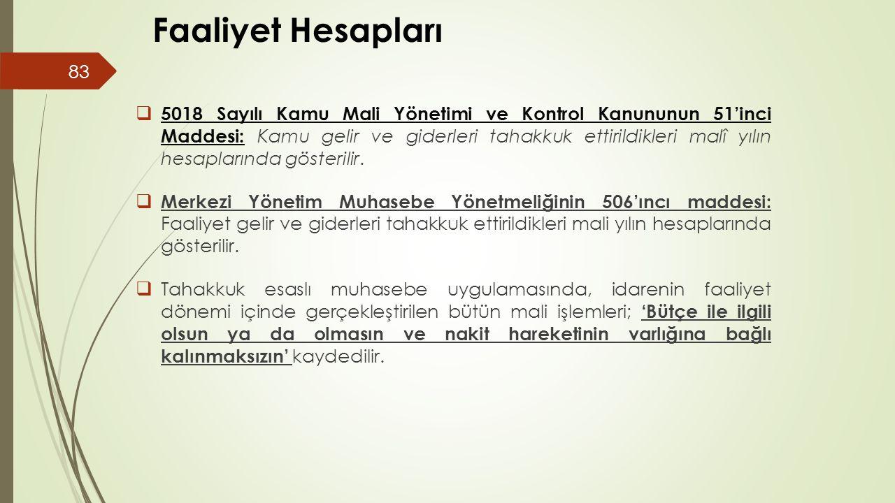 Devlet Muhasebesi III Faaliyet Hesapları.