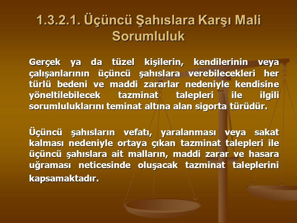 1.3.2.1. Üçüncü Şahıslara Karşı Mali Sorumluluk