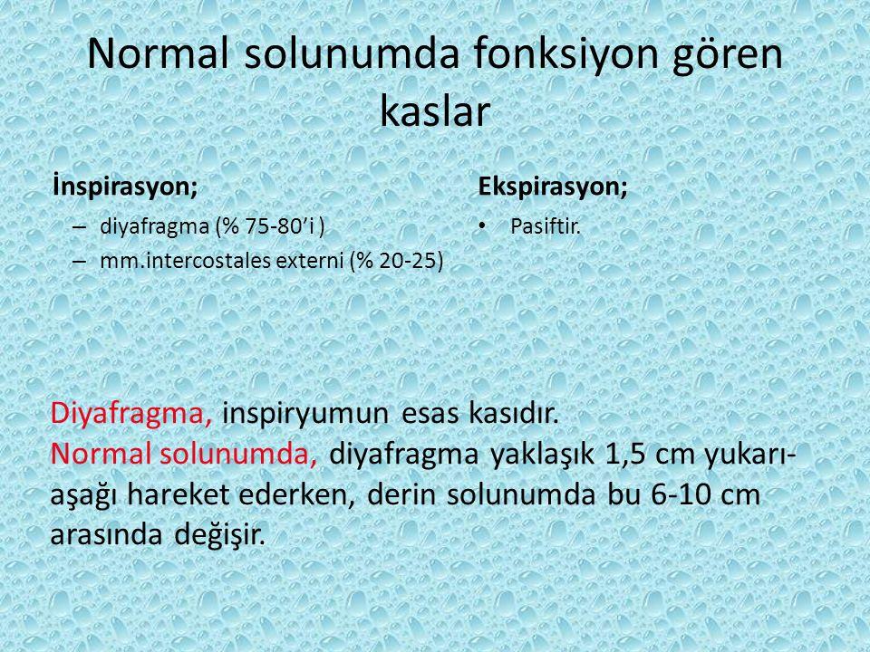 Normal solunumda fonksiyon gören kaslar