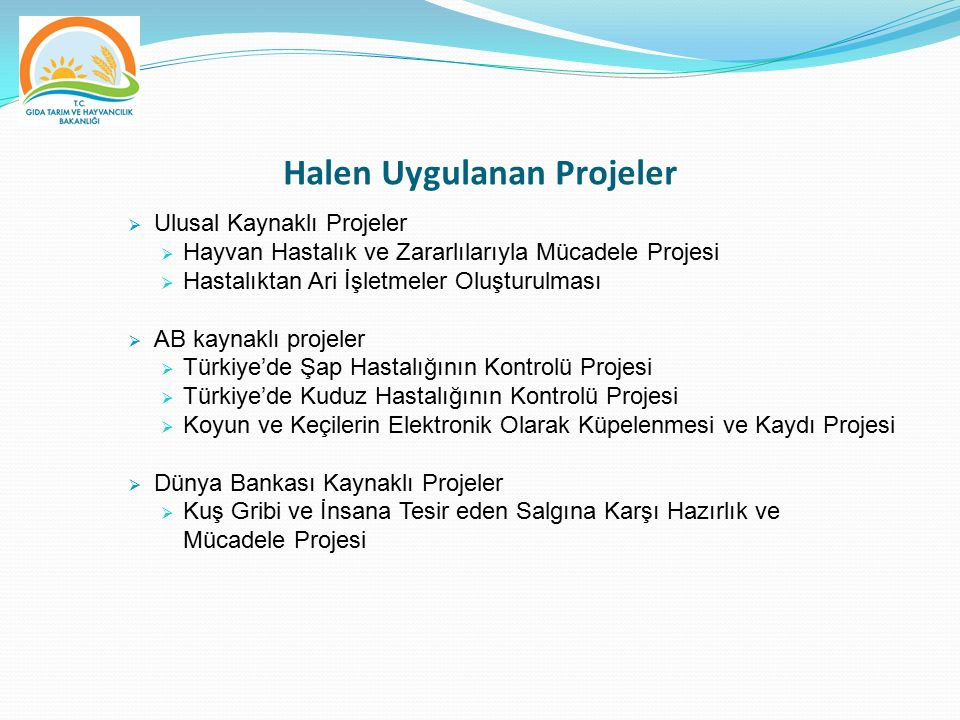 Halen Uygulanan Projeler