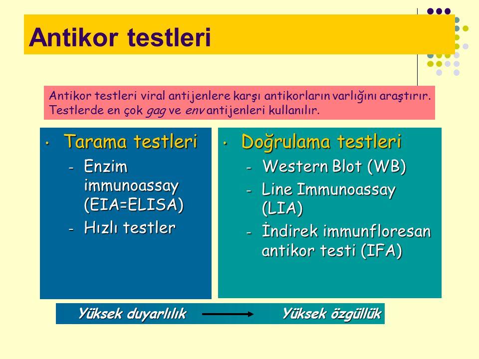 Antikor testleri Tarama testleri Doğrulama testleri