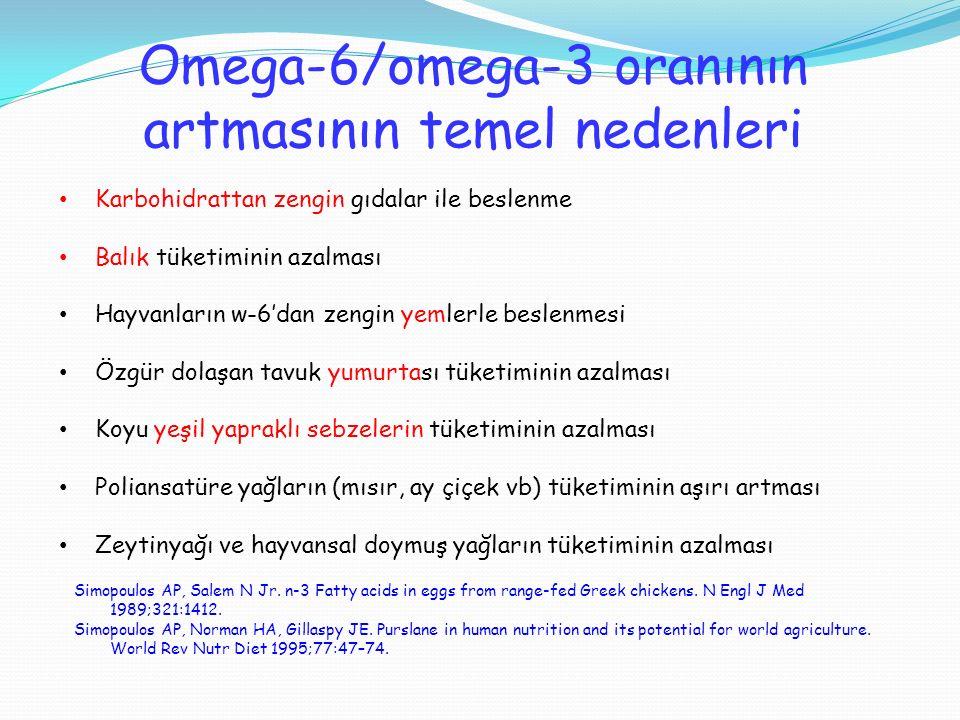 Omega-6/omega-3 oranının artmasının temel nedenleri