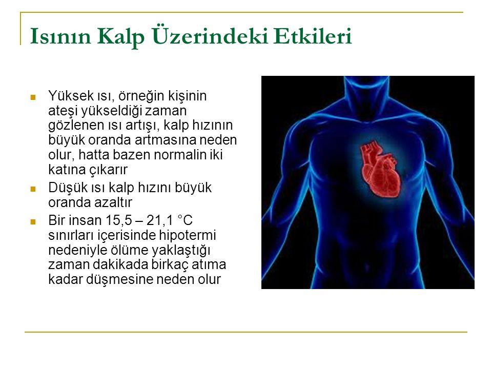 Isının Kalp Üzerindeki Etkileri