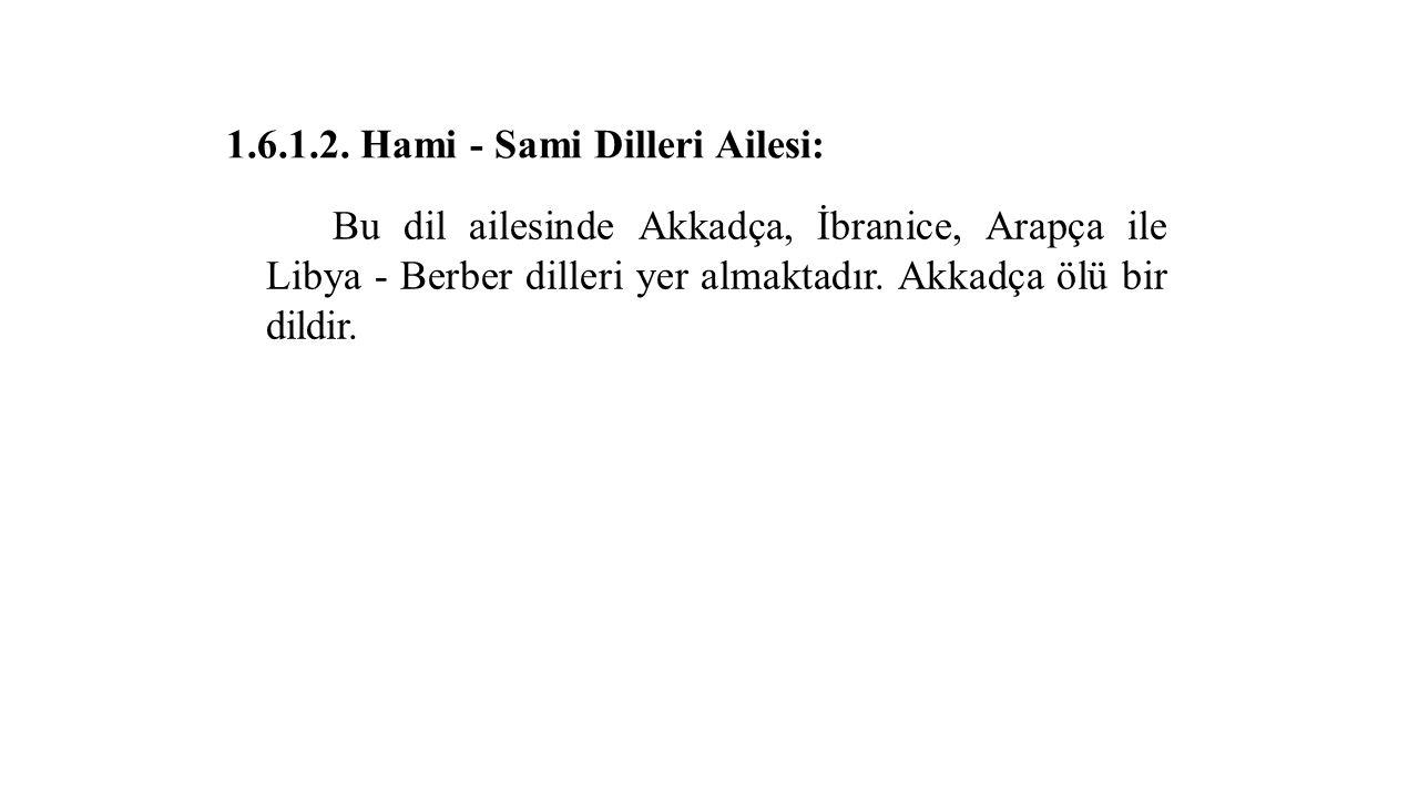 1.6.1.2. Hami - Sami Dilleri Ailesi: