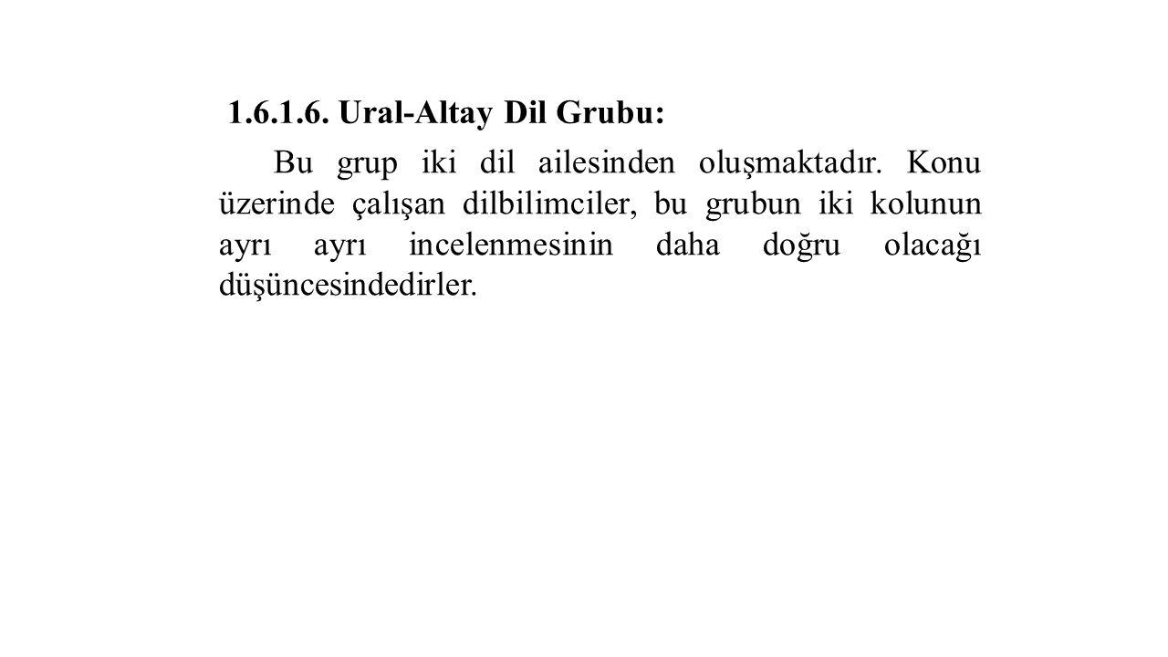 1.6.1.6. Ural-Altay Dil Grubu: