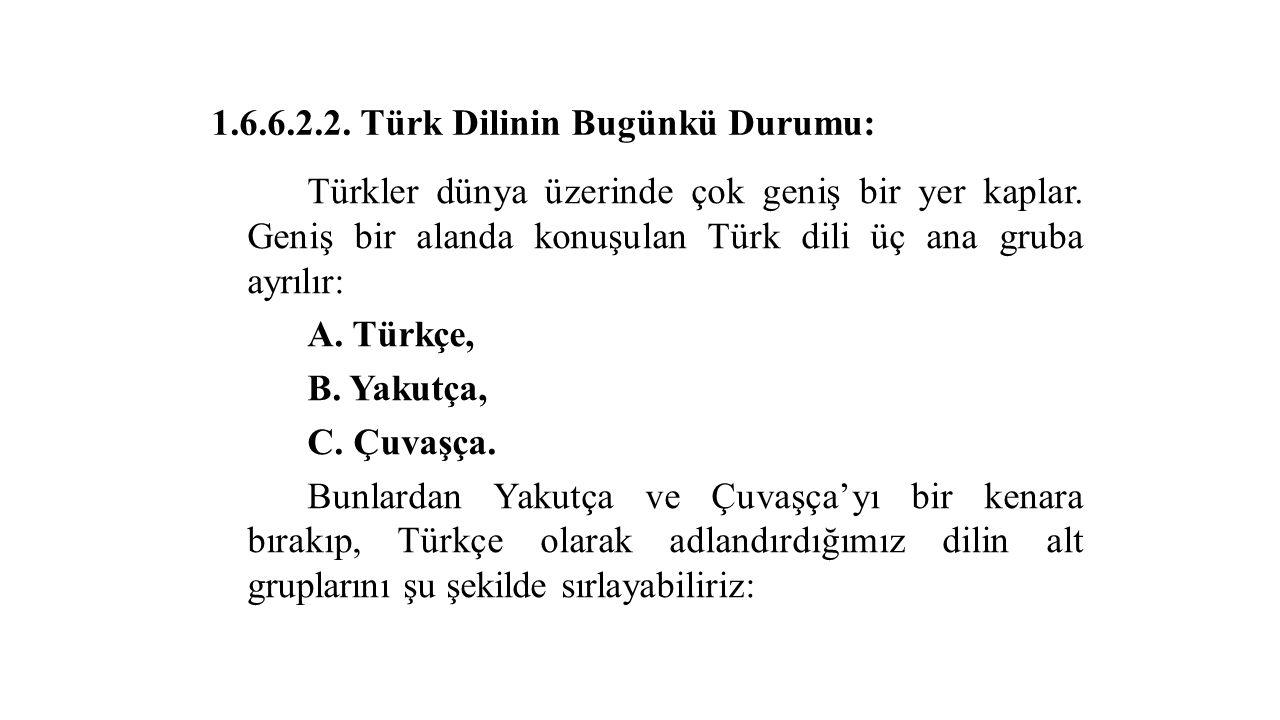 1.6.6.2.2. Türk Dilinin Bugünkü Durumu: