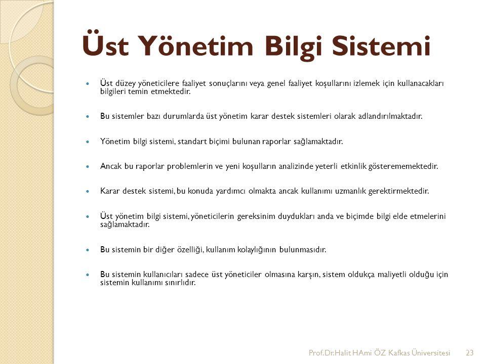 Üst Yönetim Bilgi Sistemi