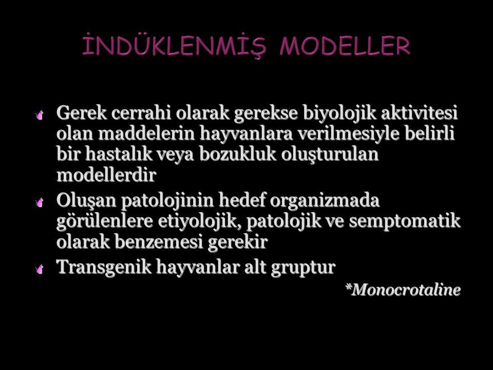 İNDÜKLENMİŞ MODELLER