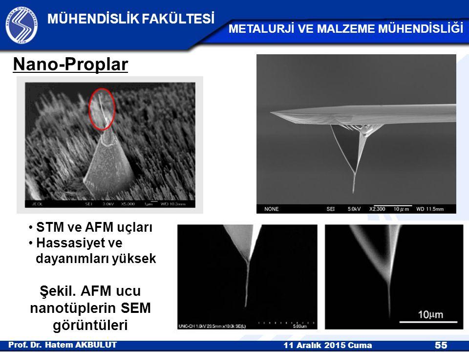 Şekil. AFM ucu nanotüplerin SEM görüntüleri