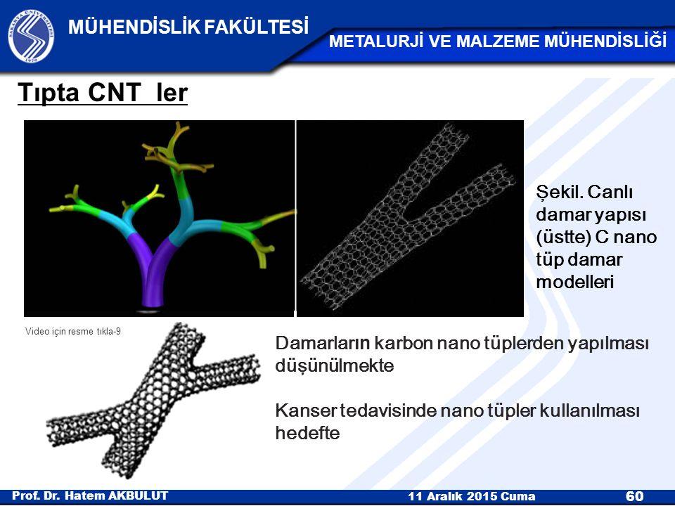 Tıpta CNT ler Şekil. Canlı damar yapısı (üstte) C nano tüp damar modelleri. Video için resme tıkla-9.