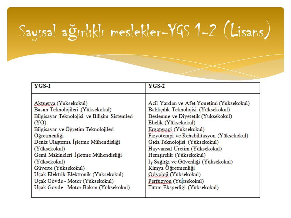 Sayısal ağırlıklı meslekler-YGS 1-2 (Lisans)