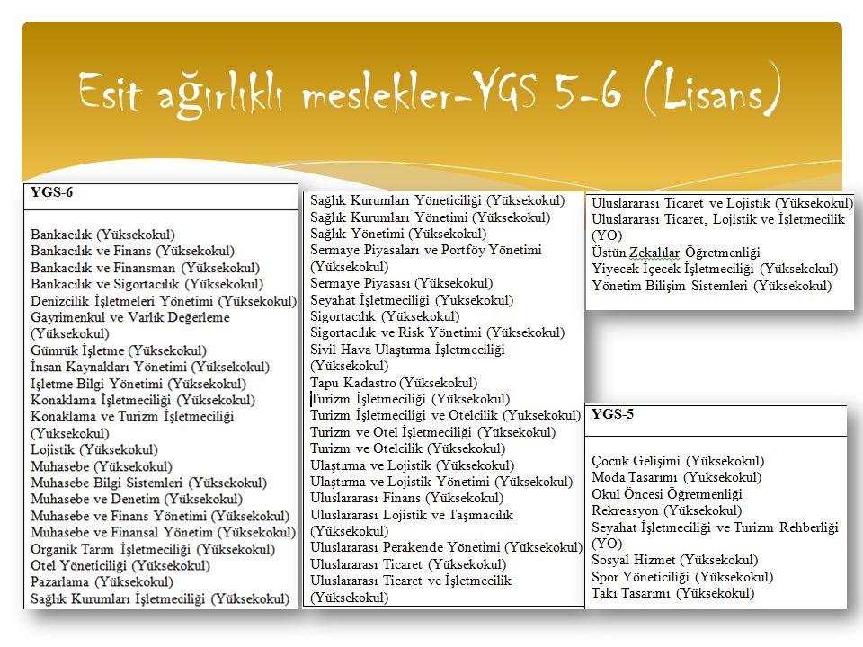 Esit ağırlıklı meslekler-YGS 5-6 (Lisans)