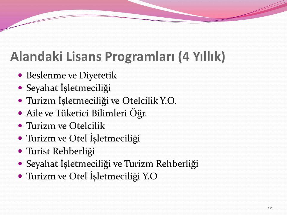Alandaki Lisans Programları (4 Yıllık)