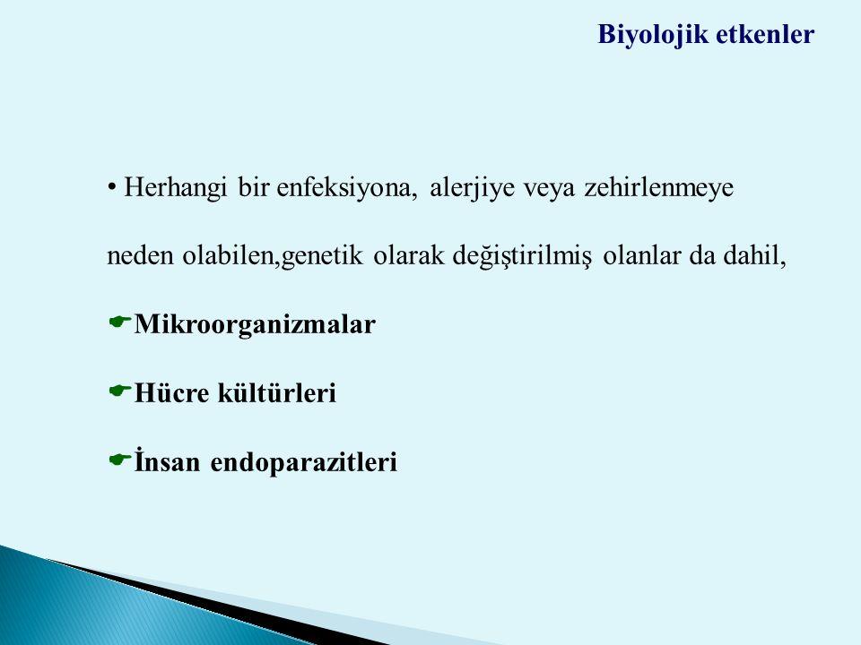 İnsan endoparazitleri