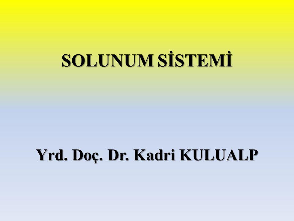 Yrd. Doç. Dr. Kadri KULUALP