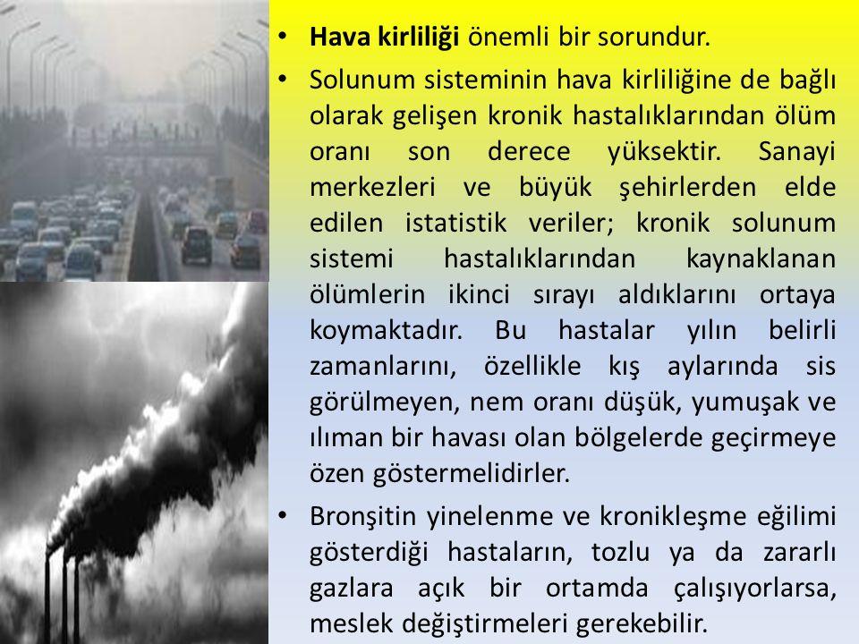Hava kirliliği önemli bir sorundur.