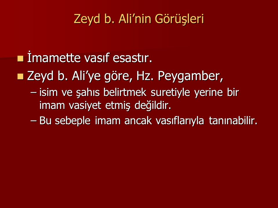 Zeyd b. Ali'nin Görüşleri