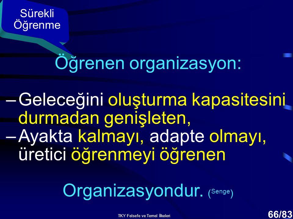 Öğrenen organizasyon: