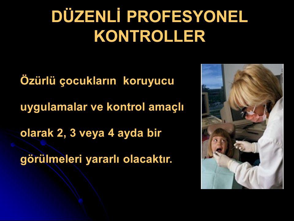 DÜZENLİ PROFESYONEL KONTROLLER