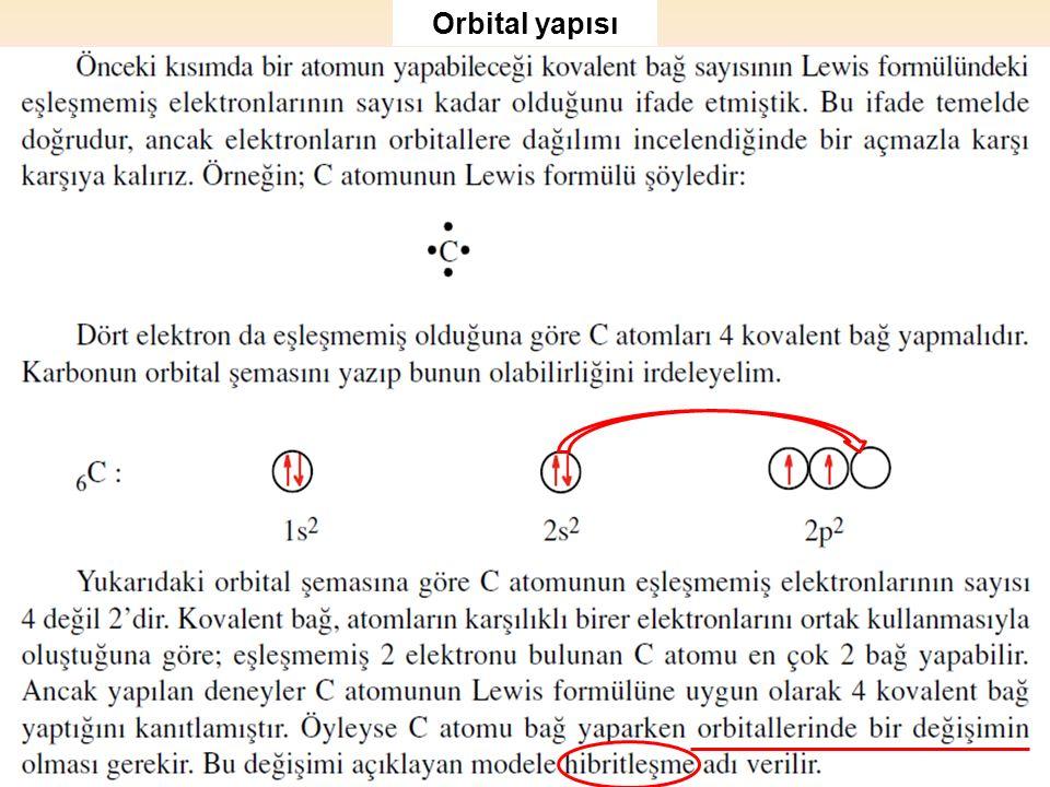 Orbital yapısı
