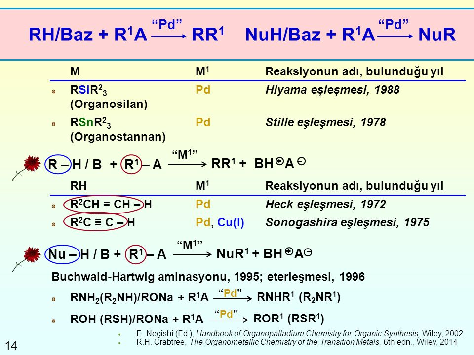 RH/Baz + R1A RR1 NuH/Baz + R1A NuR Pd Pd R – H / B + R1 – A