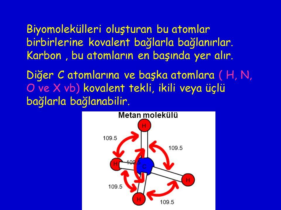 Biyomolekülleri oluşturan bu atomlar birbirlerine kovalent bağlarla bağlanırlar. Karbon , bu atomların en başında yer alır.