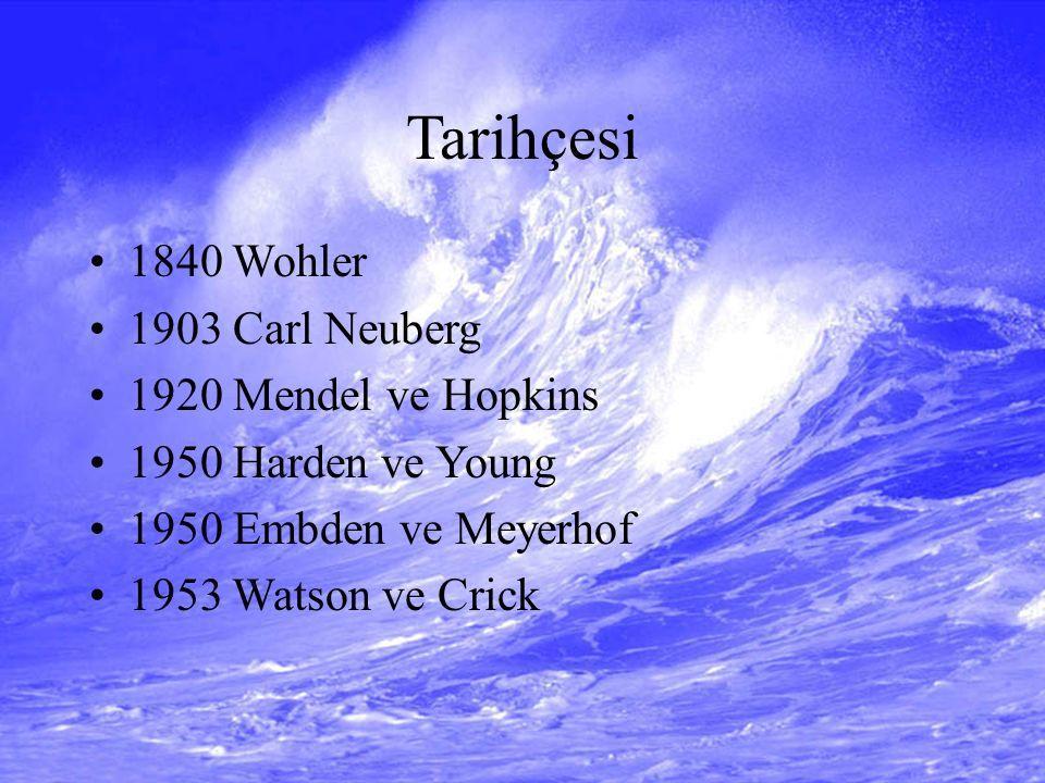 Tarihçesi 1840 Wohler 1903 Carl Neuberg 1920 Mendel ve Hopkins