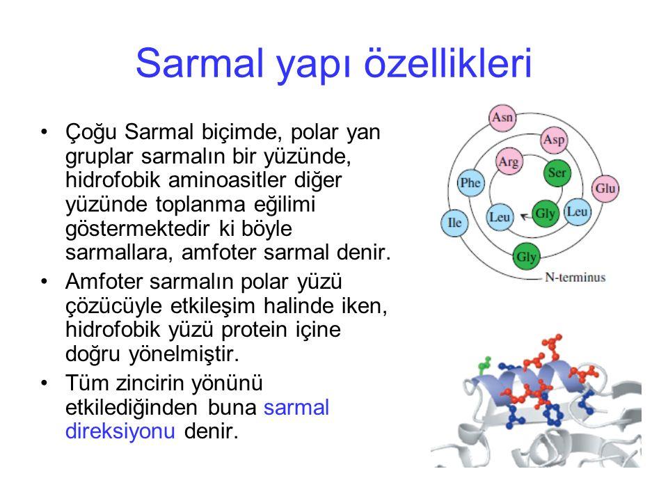 Sarmal yapı özellikleri