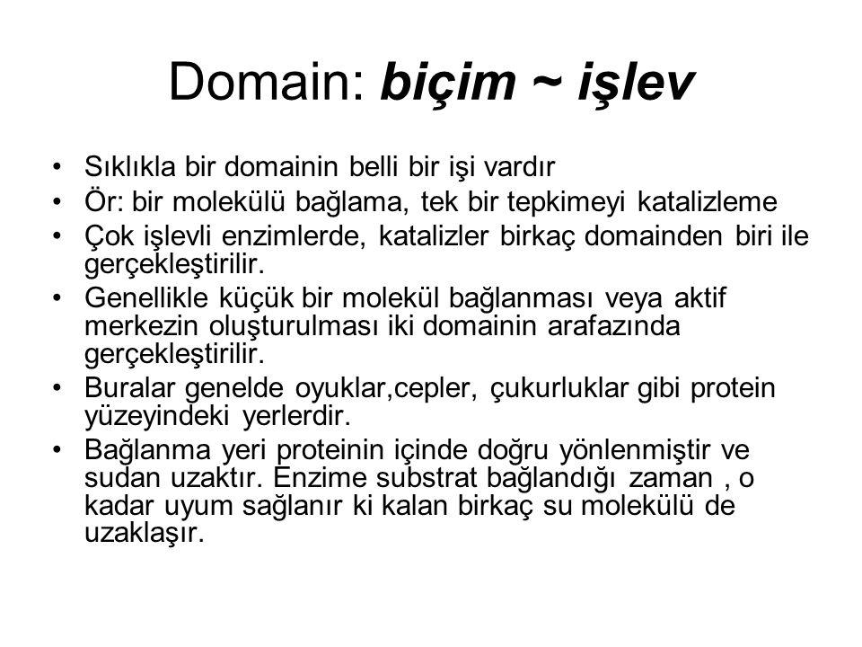 Domain: biçim ~ işlev Sıklıkla bir domainin belli bir işi vardır